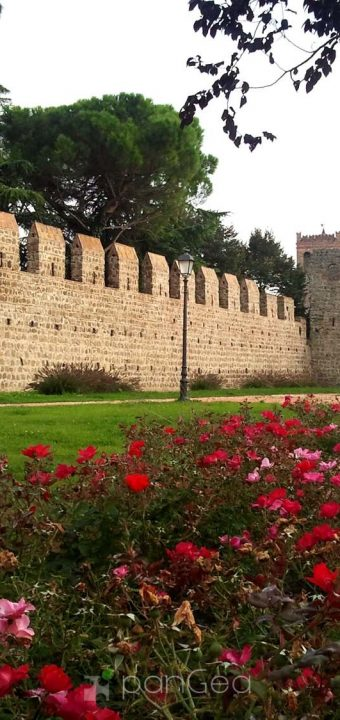 GREEN AREA OF WALLS MONSELICE
